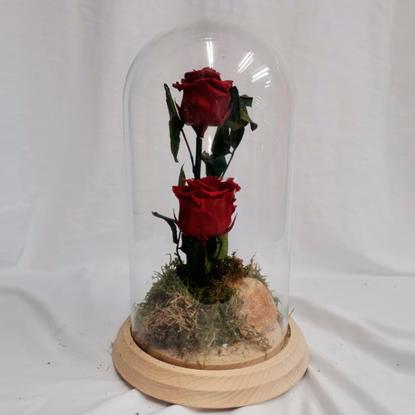 Ref.112710062021 Cúpula de dos Rosas