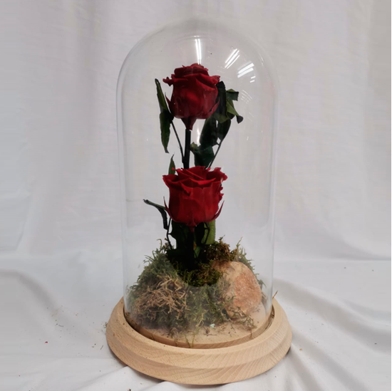 Imagen de Ref.112710062021 Cúpula de dos Rosas